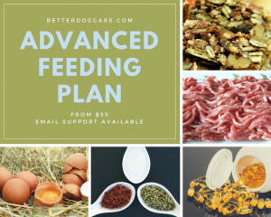 Advanced Feeding Plan