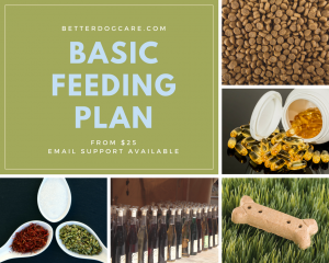 Basic Feeding Plan